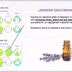 Your Brain on Lavender Oil